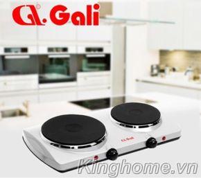 Bếp điện đôi Gali GL-2003