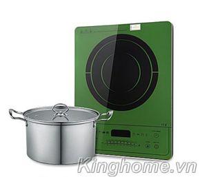 Bếp điện từ đơn Taka I1V
