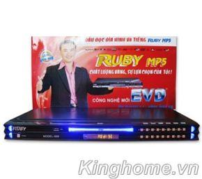 Đầu đĩa Ruby EVD 999 (3801)